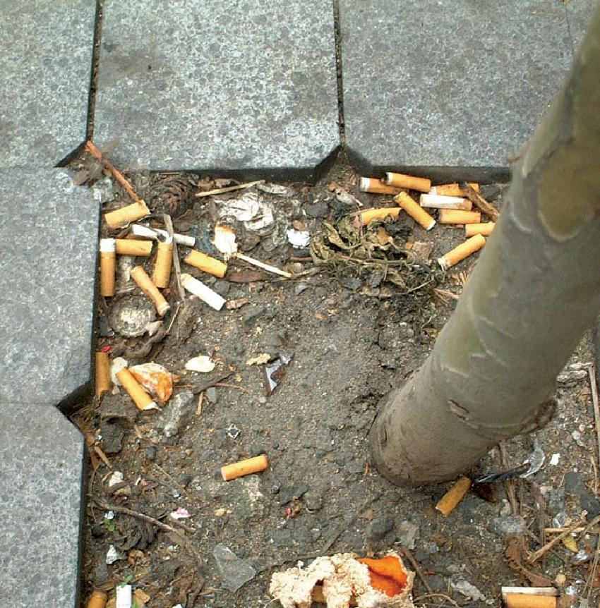 Litter from cigarette smoking